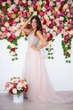 Full längdstående av den härliga flickan i klänningen som poserar över colo royaltyfri bild