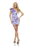 Full length of blond female in lilac dress Stock Image