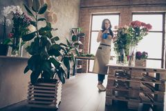 Full length body size photo beautiful she her lady many roses vases retail seller assistant hands arms check flowers. Condition pulverize fertilizer water royalty free stock photos