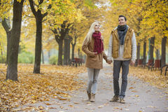 Full length of couple walking while looking up in park during autumn Royalty Free Stock Photo