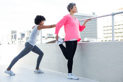 Full length of fit women exercising Royalty Free Stock Photo