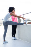 Full length of fit women stretching Stock Photos