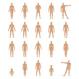 Full length front, back human silhouette set with marked body's Royalty Free Stock Image