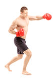 Full length portrait of an athlete with boxing gloves Royalty Free Stock Photos
