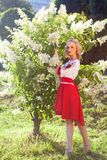 Full length portrait of barefoot attractive woman dressed in in stylish red white dress posing near bush with white flowers in. Garden. standing, looking at stock image