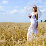 Full length portrait of beautiful blond female Royalty Free Stock Photos