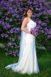Full length portrait of beautiful bride with long veil standing. Near blooming lilac tree in summer garden Stock Photography