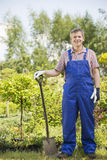 Full-length portrait of confident gardener holding spade in plant nursery Royalty Free Stock Photography