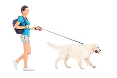 Full length portrait of a female student walking her dog Royalty Free Stock Images