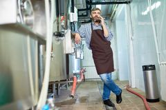 Bearded Brewer Using Smartphone. Full length portrait of handsome bearded brewer wearing apron standing at modern beer factory and talking to colleague on stock photography