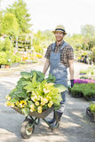 Full-length portrait of happy gardener pushing wheelbarrow with plants at garden Royalty Free Stock Photos