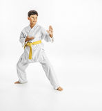 Full length portrait of a karate child exercise on white background Royalty Free Stock Photo