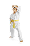 Full length portrait of a karate child exercise on white background Royalty Free Stock Images