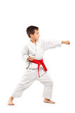 Full length portrait of a karate child posing. On white background stock photography