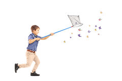 Full length portrait of a kid running and catching butterflies. With net isolated on white background royalty free stock photos