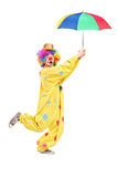 Full length portrait of a male clown with umbrella. On white background Royalty Free Stock Images