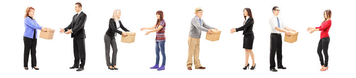 Full length portrait of people collaborating each other Royalty Free Stock Photography