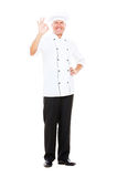 Full length portrait of smiley cook Royalty Free Stock Images