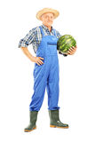 Full length portrait of a smiling farmer holding a watermelon stock photo
