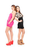 Full length portrait of a smiling girlfriends standing close tog stock images
