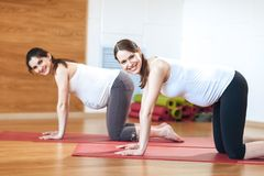 Full length portrait of two young pregnant fitness model in sportswear doing yoga, pilates training, balance exercise bird dog, kn stock photos