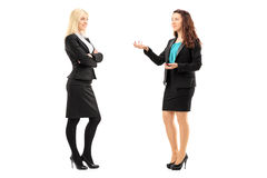 Full length portrait of a young professional women having a conversation. Isolated on white background royalty free stock photography