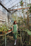 Full length portrait of a young redheaded girl walking. In a glass house full of cacti Royalty Free Stock Photos