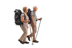 Full length profile shot of elderly hikers walking Royalty Free Stock Image