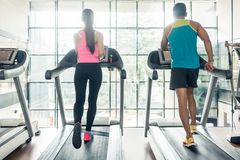 Rear view of a fit woman and her cardio workout partner running Royalty Free Stock Photography