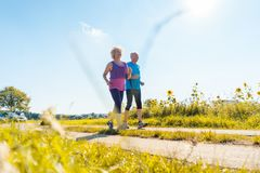 Two healthy senior people jogging on a country road in summer stock photography