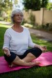 Full length of senior woman meditating at park. Full length of senior woman meditating while sitting on exercise mat at park royalty free stock photo