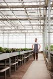 Full-length shot of man worker standing in greenhouse. Full-length shot of bearded worker in apron standing in greenhouse Royalty Free Stock Images