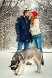 Full-length shot of the beautiful loving couple kissing during the walk with siberian husky in the snowy forest during Stock Photos
