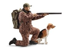 Hunter kneeling with a shotgun and a beagle dog. Full length shot of a hunter kneeling with a shotgun and a beagle dog isolated on white background stock photo