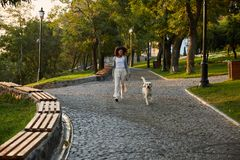 Full-length shot of pretty healthy young lady walking in the morning in park with dog. Full-length shot of pretty healthy african young lady walking in the royalty free stock image