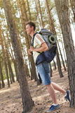 Full length side view of male hiker with backpack walking in forest Royalty Free Stock Photography