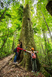 Full length side view of a two young girl hugging tree in forest Royalty Free Stock Photo