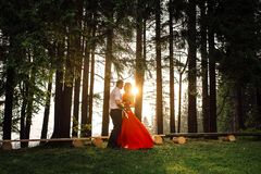Full-length view of the elegant couple tenderly hugging in the forest during the sunset. The girl in long red drrress is. Holding the bouquet of wild flowers Stock Image
