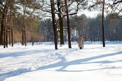 Rear view of woman in warm clothes walking through snowy forest. Full length of woman wearing warm clothes and walking along footpath through winter forest royalty free stock photography