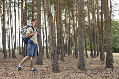 Full length of young man with backpack walking in forest Stock Image