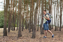 Full length of young man with backpack walking in forest Stock Photos