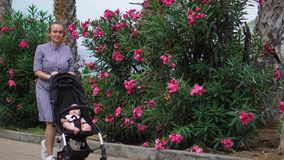 Full length of young woman looking into baby carriage in park stock video