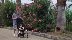 Full length of young woman looking into baby carriage in park stock video footage