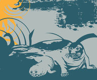 Full of life a59. Simple illustration for sealion with swirl background Royalty Free Illustration