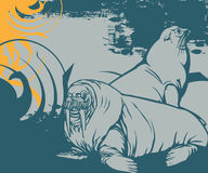 Full of life a60. Simple illustration for sealion with swirl background Stock Illustration