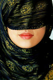 Full lips royalty free stock images