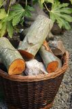 Full log basket in a garden Royalty Free Stock Photo