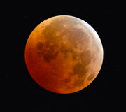 Full Lunar Eclipse Blood Moon Stock Images
