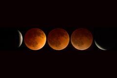 Full lunar eclipse composite April, 2014, Oregon, Cascade-Siskiy Royalty Free Stock Images
