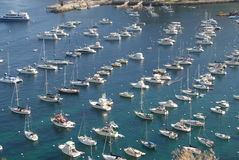 Full marina. Marina full of boats on Catalina Island Stock Photography